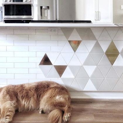 euro-tile-stone-koda-interiors-island-triangle-dog