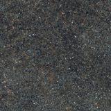 euro-tile-stone-native-ebony-24-24